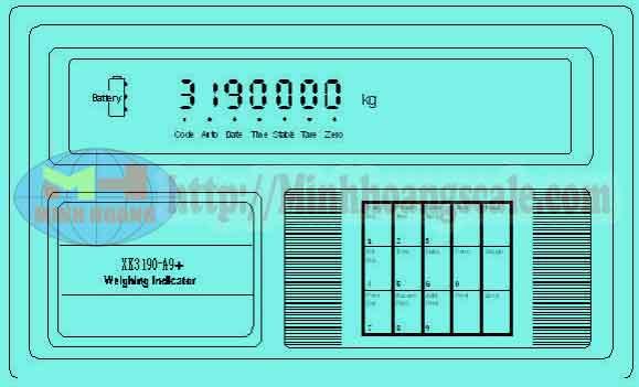 đầu cân điện tử XK3190-A9P